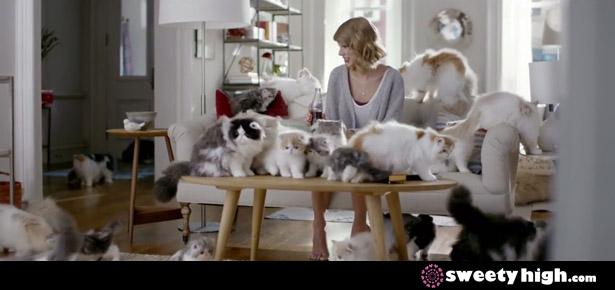 taylor swift diet coke cats