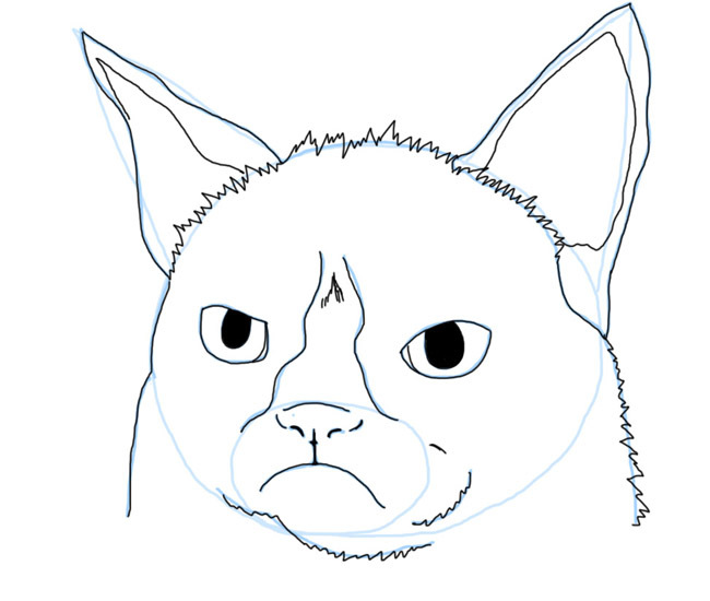 Drawing Tutorial Learn To Draw Grumpy Cat Aka Tardar Sauce