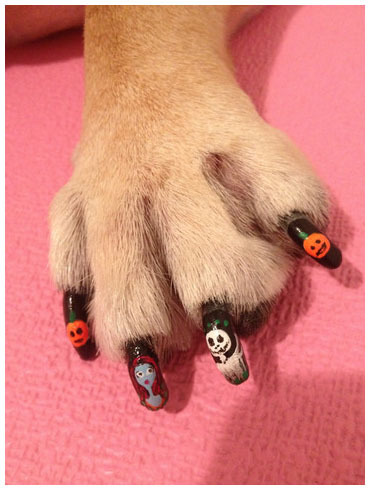 Halloween Dog Nail Art With Pumpkins Ghouls And More