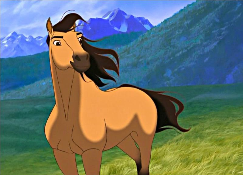 The horse Spirit from the 2002 movie Spirit: Stallion of the Cimarron