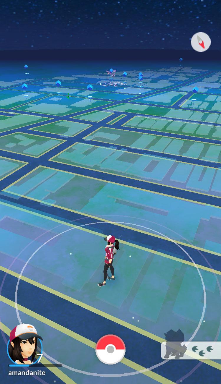 Arcanine hunting in Pokémon Go