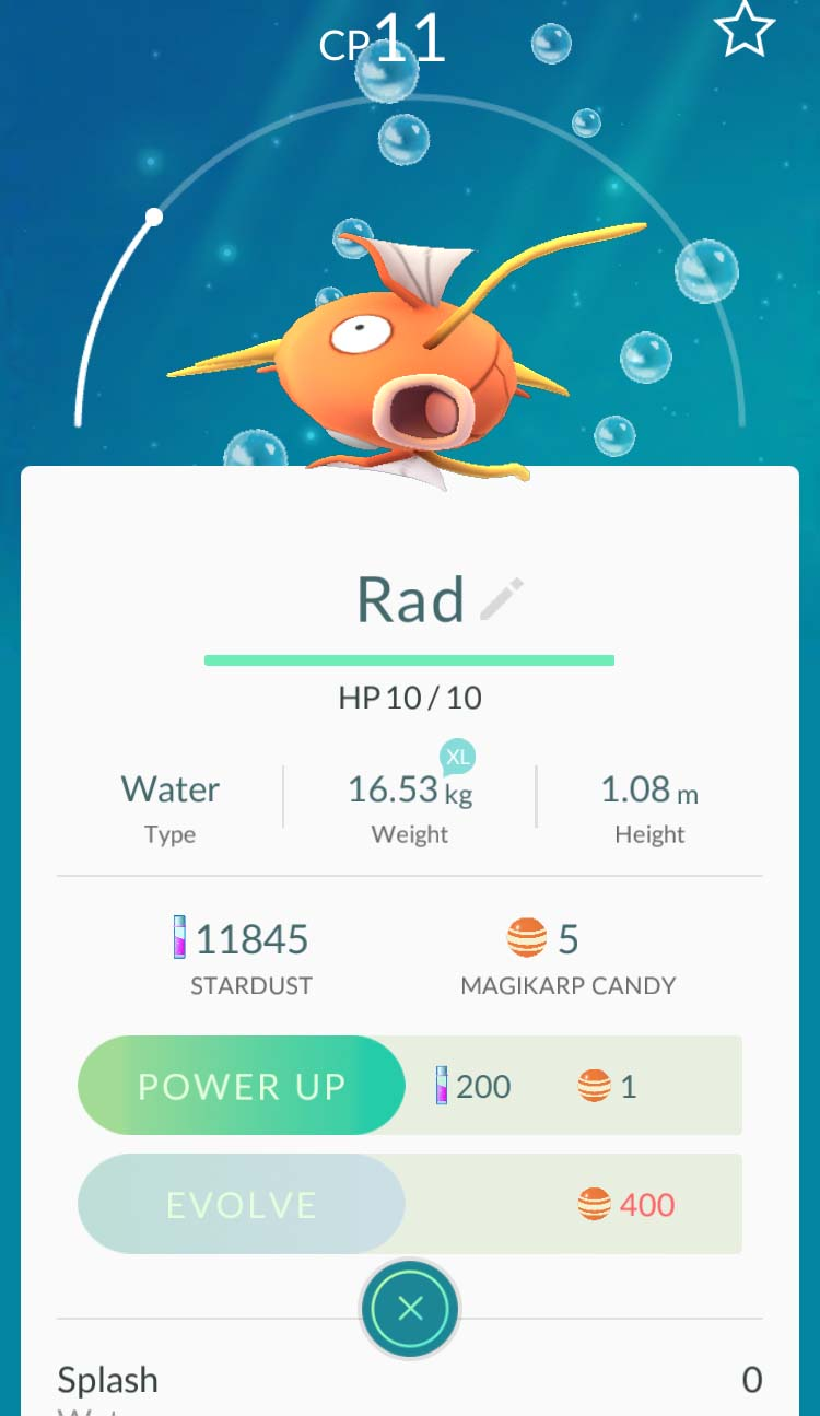 It will take a lot of Magikarp candies to evolve into Gyarados