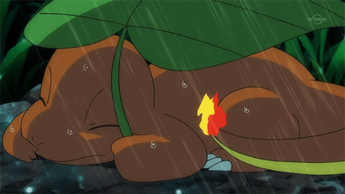 Charmander in Pokémon anime holds a leaf over its tail in the rain