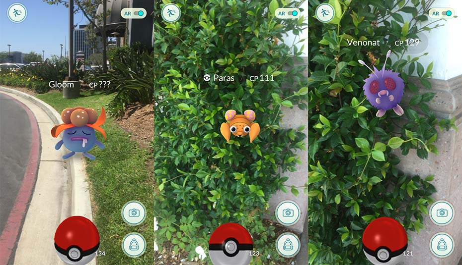 Catching some grass and bug Pokémon in the wild