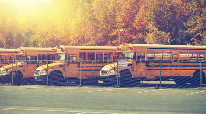 School busses lined up in a parking lot