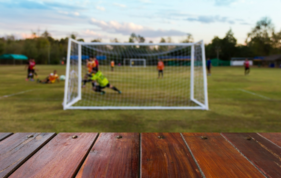 Soccer field with net