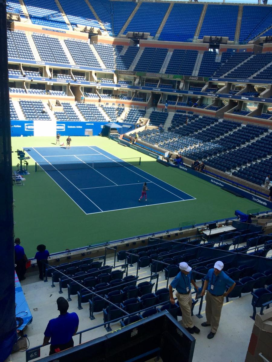 Venus Williams practicing.