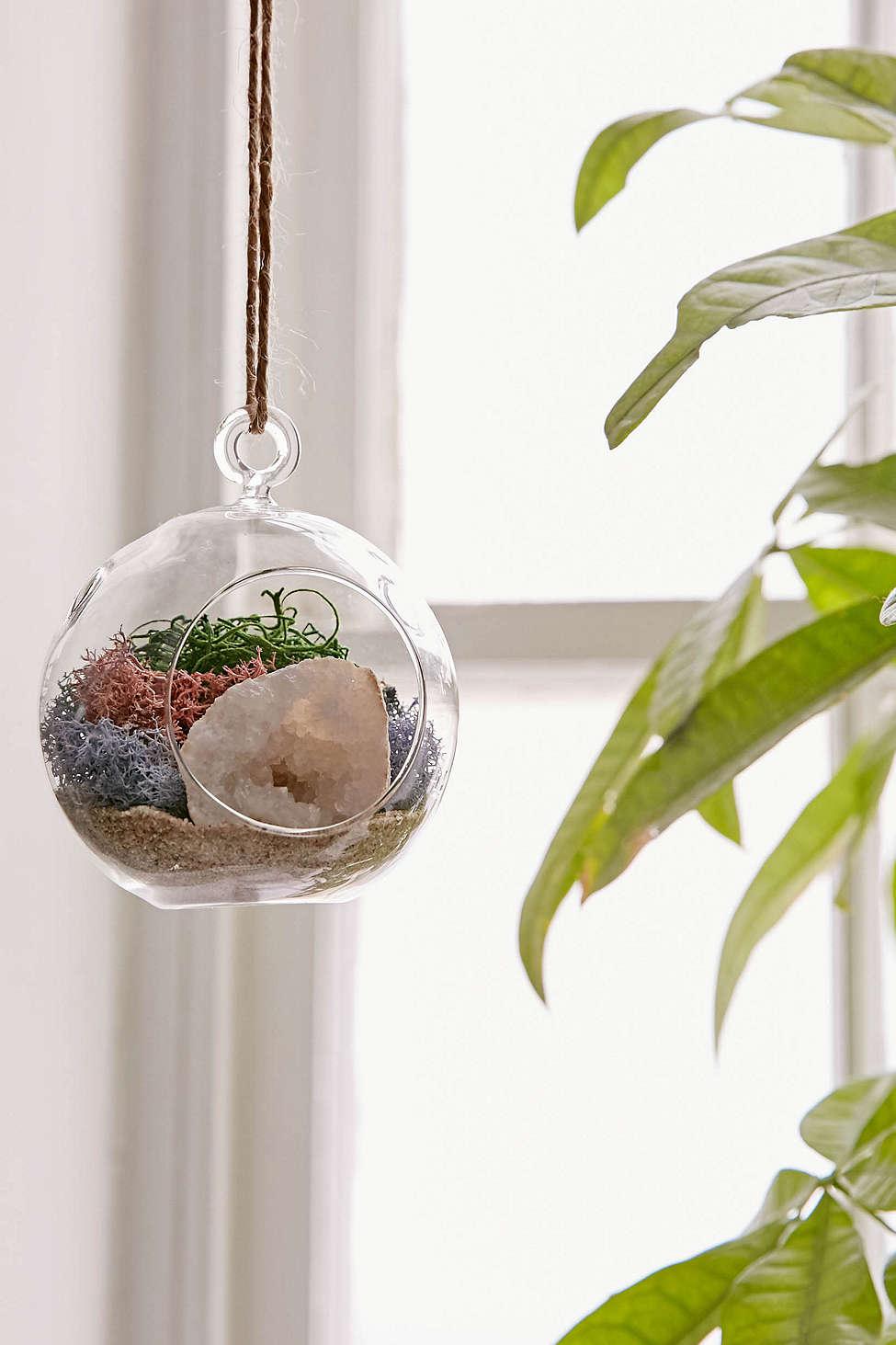 Hanging Geode Terrarium