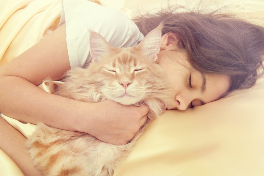 Brown haired girl cuddling with her tabby cat while napping