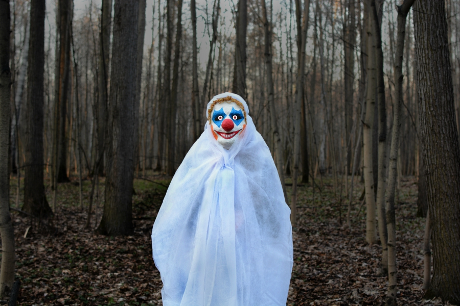 clown standing in the middle of a forrest