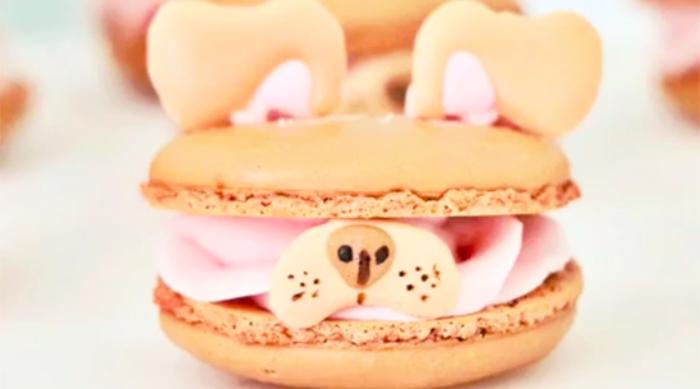 Dog Snapchat Filter Macaron