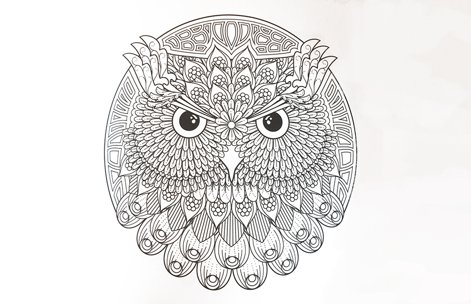 Coloring Bird Mandalas owl in coloring book