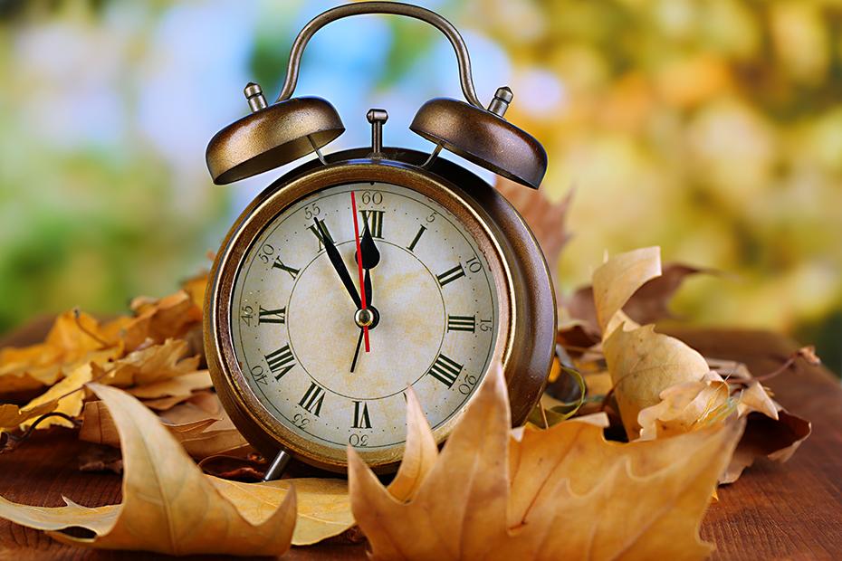 Clock in autumn leaves