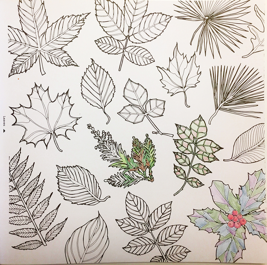 Fantastic Collections coloring book: partially colored leaves