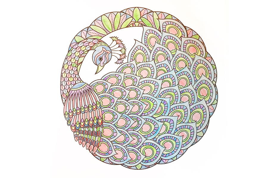 Adult Coloring Book Reviews for