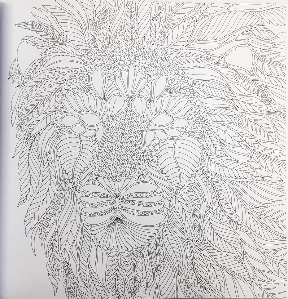 Wild Savannah coloring book: lion in black and white