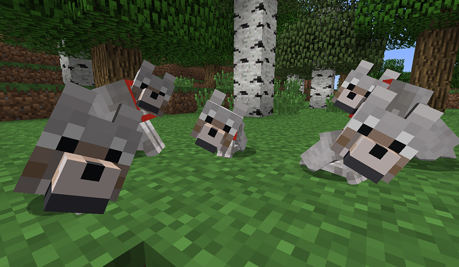 Image of: Attract Wolvesminecraft121416 Sweety High How To Tame Wolves Ocelots Horses Cows Pigs In Minecraft