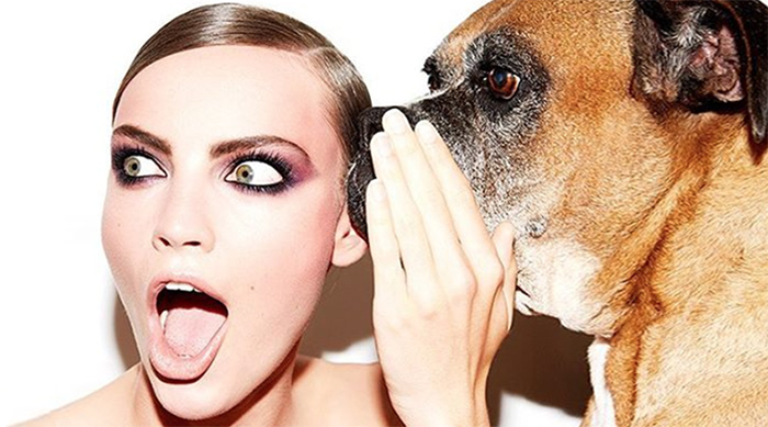 Beauty is Boring: dog whispering in girls' ear