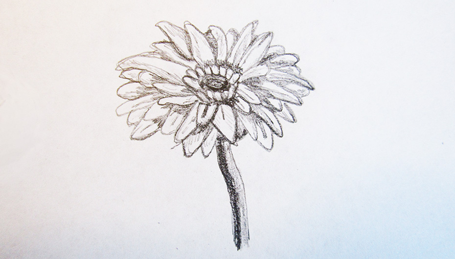 How to Draw Cool stuff shaded flower