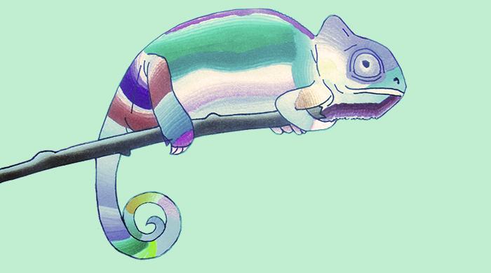 Chameleon Pens chameleon drawing