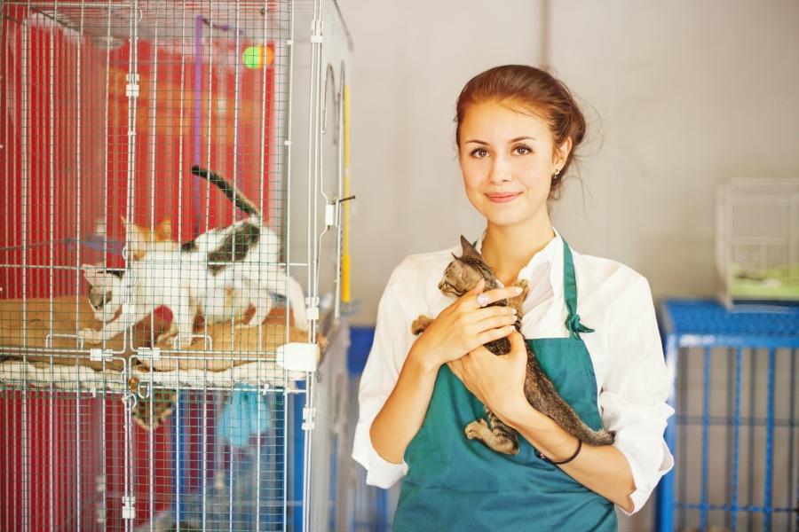 Girl volunteering at an animal shelter