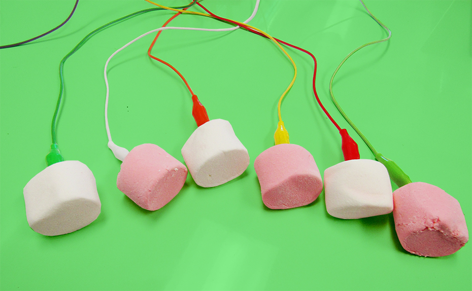 marshmallows with makey makey alligator wires