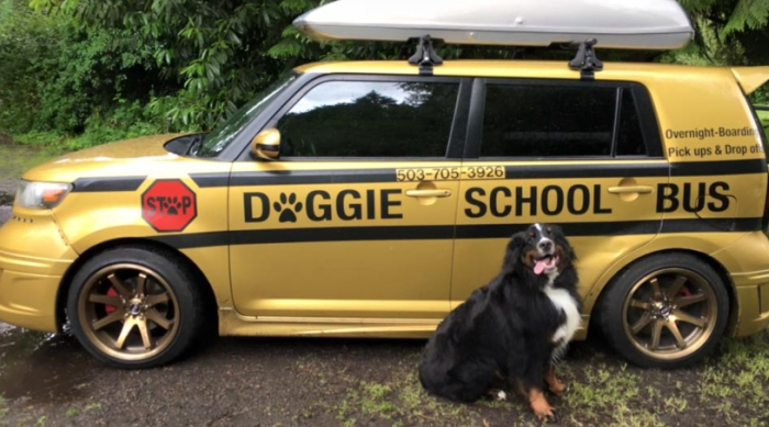 Dog With School Bus