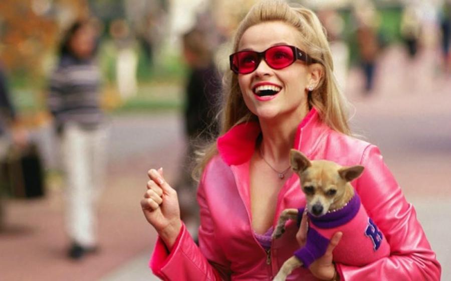 Elle Woods attending Harvard dressed in pink