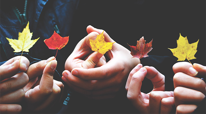 Hands holding up autumn leaves