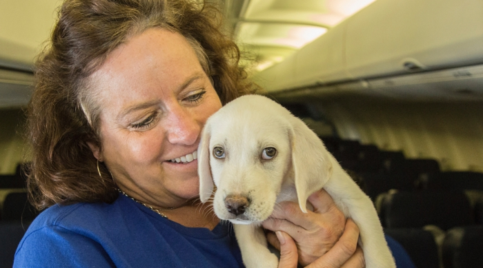 Women Holding a Dog on the Plane