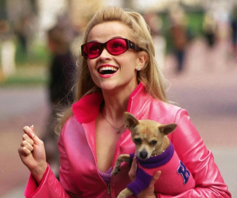 Elle Woods From Legally Blonde With Bruiser