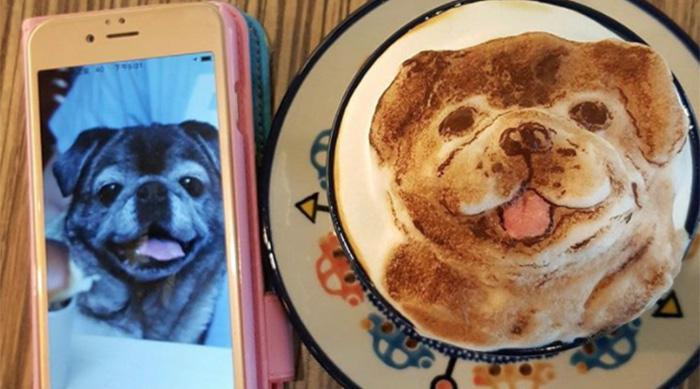 My Cofi foam latte of a pug
