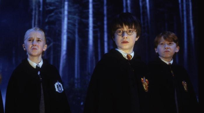 Harry Potter: Malfoy, Harry and Ron in the forest