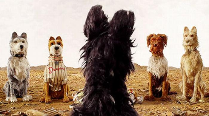 Isle of Dogs: Chief talking to Duke, Boss, King and Rex on Trash Island