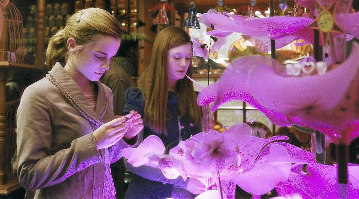"HP6-FP-00145 EMMA WATSON as Hermione Granger and BONNIE WRIGHT as Ginny Weasley in Warner Bros. Pictures' fantasy adventure ""Harry Potter and the Half-Blood Prince."""