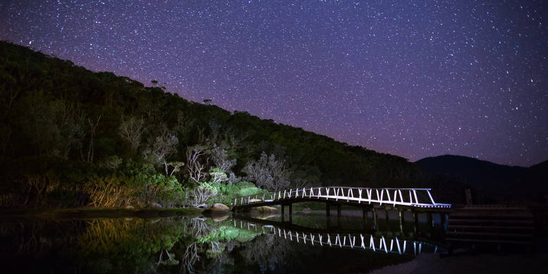 Starry Sky with Dock