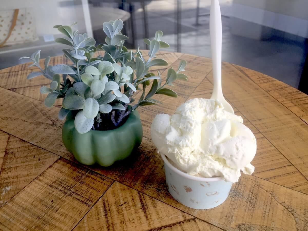 gelateria-uli-olive-oil-gelato-with-plant