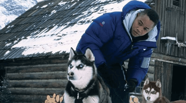 Snow Dogs: Cuba Gooding Jr. with dogs
