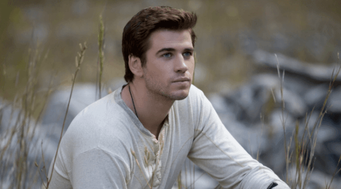 the hunger games: gale