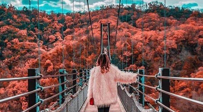 Instagram: Pink and blue nature photo of woman crossing bridge