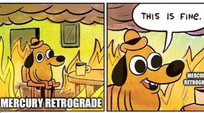 This is fine dog meme about Mercury retrograde
