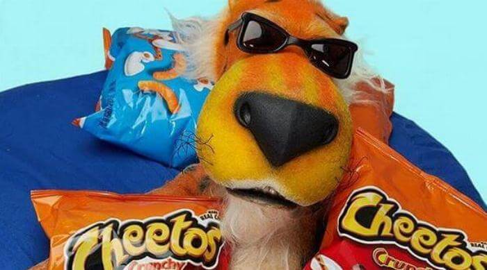 Chester Cheetah with Cheetos