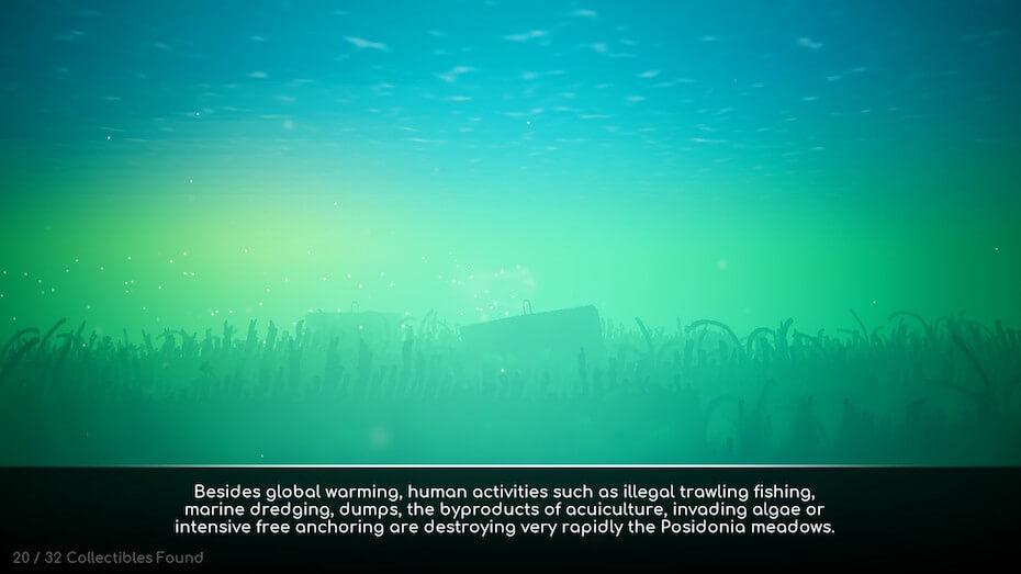 koral-human-activities-051619