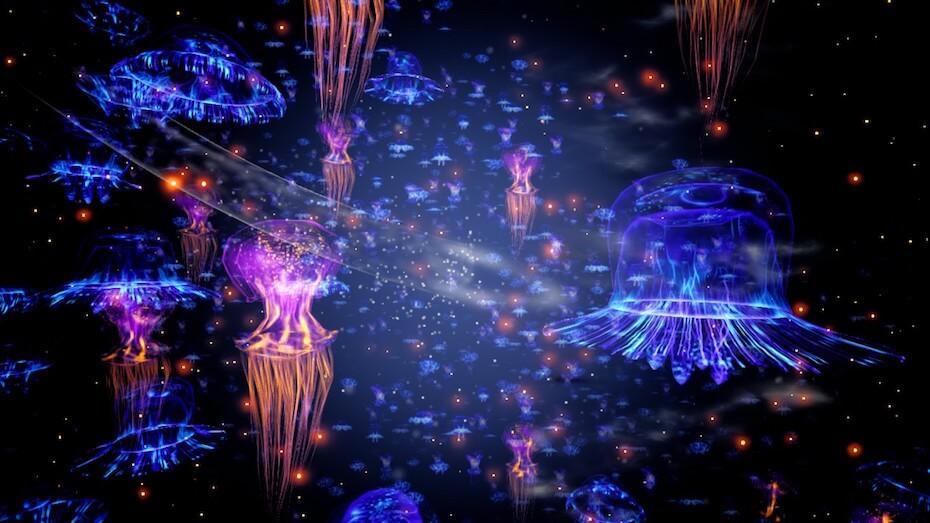koral-jellyfish-in-the-dark-051619