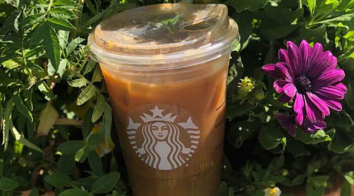 Starbucks Pumpkin Cream Cold Brew