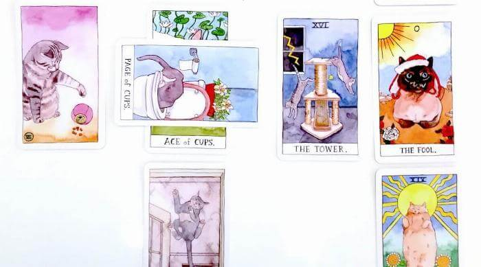 Cat Tarot Deck Celtic Cross