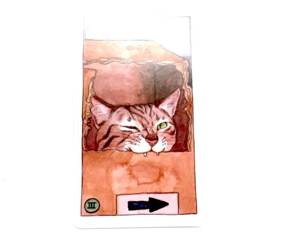 Cat tarot: 3 of cups card
