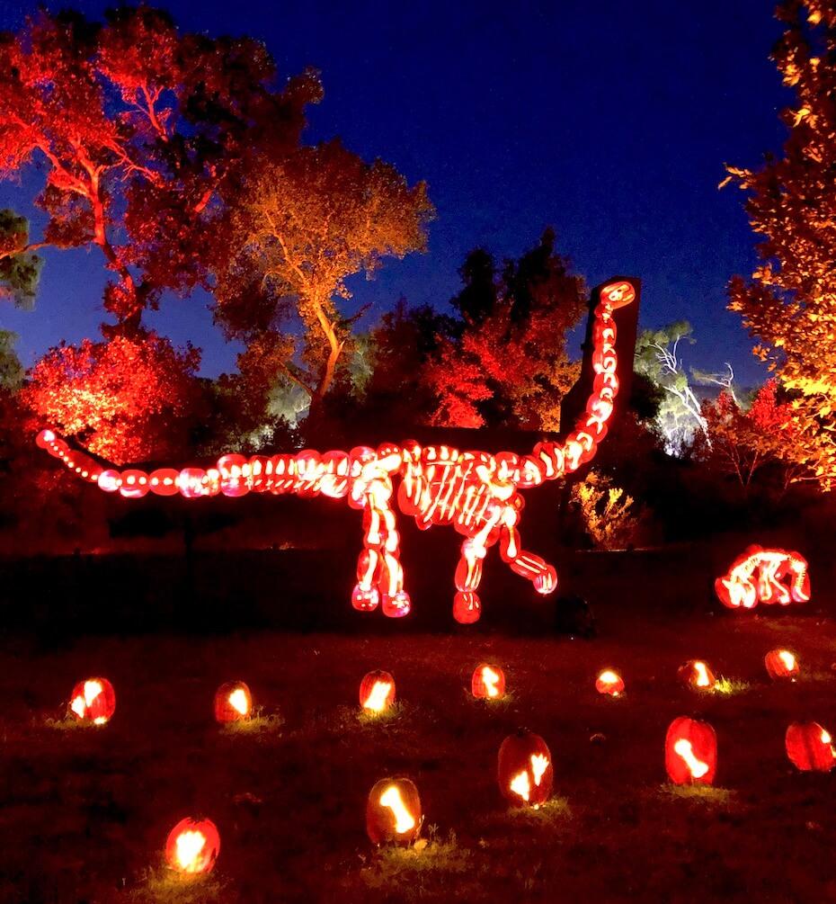 nights-of-the-jack-apatosaurus-102119