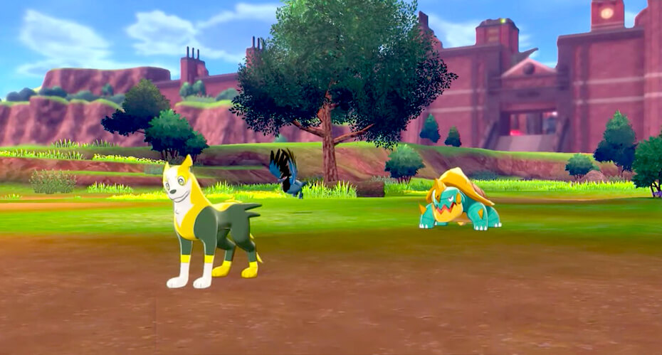 pokemon-sword-and-shield-campsite-112519