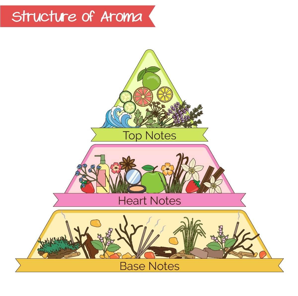 aroma structure triangle pyramid